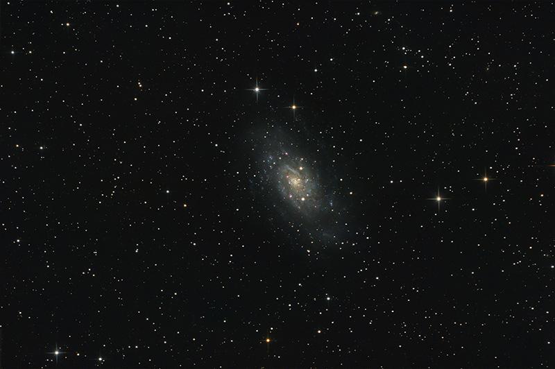 La grande Galaxie de Camelopardalis Ngc2403_asin-rl2bw