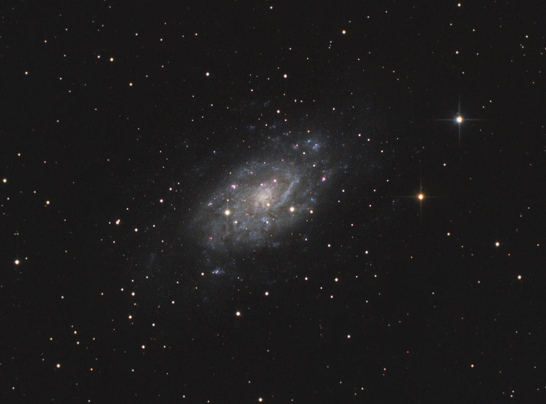 La grande Galaxie de Camelopardalis Ngc2403x_addsc-bal-asin-rl2-crop