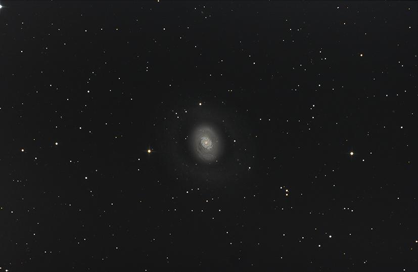 M94 et son anneau M94_sigclipnorm_ddp_noff_flat_der25